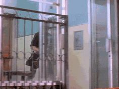 21 Best GIFs Of All Time Of The Week #107