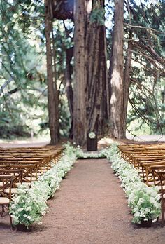 This woodsy wedding aisle is decorated with plenty of lush greenery, verbena, and sedums | Brides.com