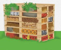 How to build an insect hotel - Great project to improve your garden by providing a home for beneficial insects.