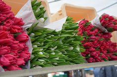 Blumenpracht auf dem Neuköllner Wochenmarkt ©entdecker-greise.de
