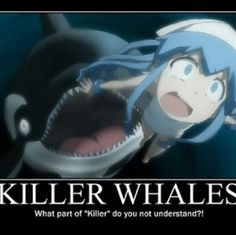 YOU THINK GHOSTS ARE SCARY?! WHAT ABOUT SHARKS AND KILLER WHALES?! -