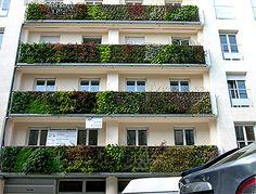 Vertical Gardens as Design Element - Commercial Interior Design ...