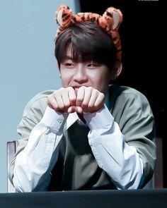 I'm a tiger rawrr 🐯 . . Crttro -------------- Turn On post notification so you don't miss any update ✨ -tags- #produce101 #wannaone #seongwoo #daniel #daehwi #baejin #jisung #jihoon #sungwoon #guanlin#jaehwan #daniel #minhyun #woojin #ongseongwoo #kangdaniel #leedaehwi #baejinyoung #jinyoung #yoonjisung #parkjihoon #hasungwoon #laiguanlin #kimjaehwan #hwangminhyun #parkwoojin