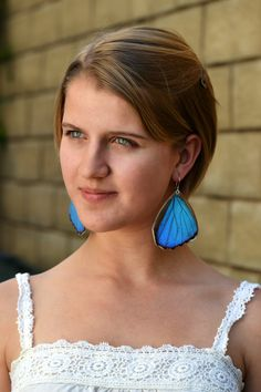 Real blue morpho butterfly earrings by PetalConnection on Etsy, $42.00