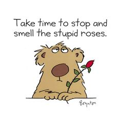 Sandra Boynton  Adams Boynton Important and meaningful Life advice… Make Me Happy, Make Me Smile, Sandra Boynton, Funny Quotes, Life Quotes, Meaningful Life, Pics Art, Funny Cartoons, Cute Pictures