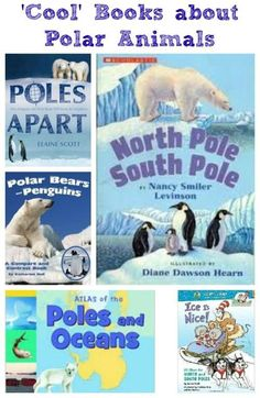 Fun reads that explore the poles, penguins, polar bears and more things at the ends of the Earth!  Great to use for arctic animals unit