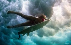 Underwater Photography by Sarah Lee