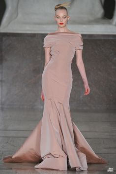 Zac Posen 2012/2013...love this designer.. love the dress...