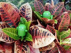 Clean up files on your Android device - CNET. How to give your Android device a proper spring cleaning, both in hardware, and software.