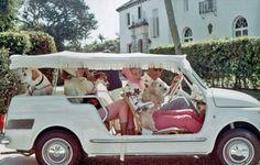The Glam Pad: Vintage Palm Beach