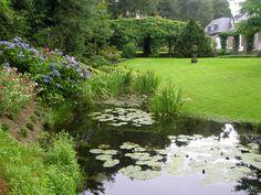 7 beste afbeeldingen van hoveniersbedrijf hanewinkel landscaping
