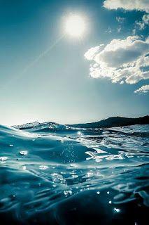 Srdcová cesta: Příběh o bójce v moři