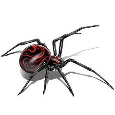 Black Widow Spider Tattoo Kamisco