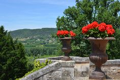 https://flic.kr/p/vJbVA6 | Le Périgord Noir - Le Château des Milandes