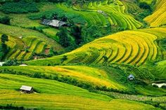 Easy Trekking Sapa 2 days 3 nights