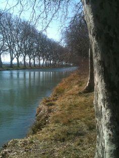 Canal du Midi near Lézignan-Corbières