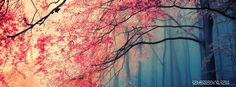 trees with pink leaves in the forest cool facebook timeline images.trees with pink leaves in the forest cool facebook timeline banner.