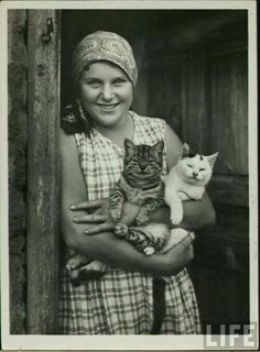 LIFE Magazine. Those cats could not look more content.