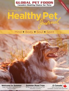 We're kicking off summer with the latest issue of our Healthy Pet Journal. Read tips to keep pets cool & safe this summer.  Global Pet Foods stores across Canada have stocked up on all of the summer essentials that you'll need to care for your pets like fun toys to cool leashes, collars and harnesses, and from travel products to supplements.  Pick up your free copy at your neighbourhood store. Find the coupon insert to save on a variety of food & supplies.