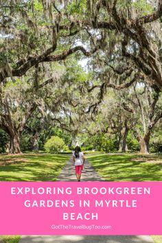 Exploring Brookgreen Gardens in Myrtle Beach - Ramnaths Away Myrtle Beach Things To Do, Myrtle Beach Vacation, Florida Vacation, Florida Beaches, Beach Trip, Vacation Spots, Beach Travel, Clearwater Florida, Sarasota Florida
