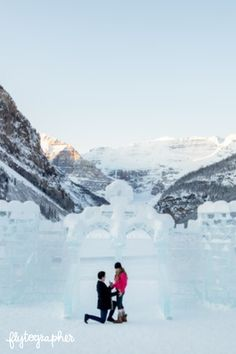 Tucked away in the heart of Alberta, Lake Louise is one of the most perfect places for a proposal💍 💕 Find our photographers located in Lake Louise to help plan and capture your special moment at the link! 📸 Robin in Lake Louise Proposal Photographer, Emerald Lake, Cute N Country, Proposal Ideas, Banff, Natural Wonders, Perfect Place, Robin, Photographers