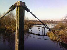"""Laagveenreservaat """"De Deelen'', The Netherlands, beheerd door Staatsbosbeheer. Utility Pole, Holland, Spaces, Netherlands, The Netherlands"""