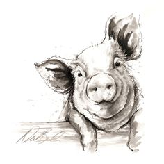 A fine art collection of farm yard animals. Pig Drawing, Painting & Drawing, Drawing Ideas, House Drawing, Animal Drawings, Art Drawings, Animal Sketches, Pig Art, Farm Art