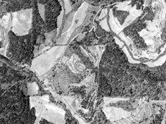 Dollar Mill Farm 1938 Aerial Photo