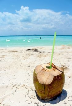 holiday in Mauritius relax and drink coconut water Coconut Water Recipes, Coconut Water Smoothie, Coconut Water Benefits, Weight Loss Water, Coconut Oil, Caribbean, The Cure, Fruit, Drinks