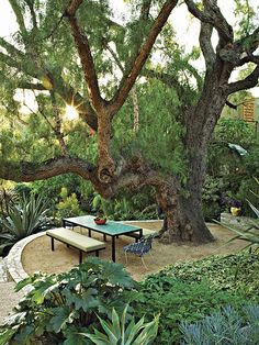 Image from Gardens Are For Living: Design Inspiration for Outdoor Spaces by Rizzoli via Vogue