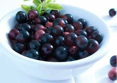 """The Acai Berry (pronounced ah-sigh-EE) is often called a """"Superfood"""" due to it's due to it's dense nutritional qualities and numerous health benefits. But what exactly are Acai berries?The Acai fruit only grows high atop a plant in the Amazon basin o http://track.markethealth.com/SH2S2"""