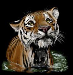 Tiger by https://artistmaz.deviantart.com on @DeviantArt