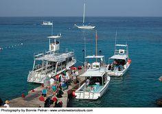 Dive boats_C.jpg (500×352)
