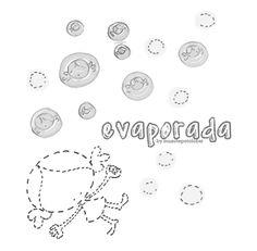 evaporada