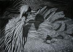 #52 Vulturine Guineafowl