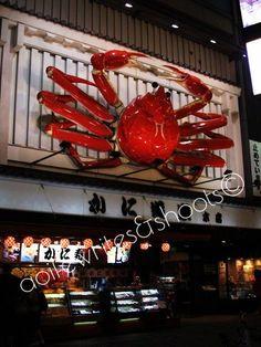 Photos from Japan: The Sayonara Trip Japan Trip, Japan Travel, Osaka Food, Food N, Restaurant, Restaurants, Dining Room
