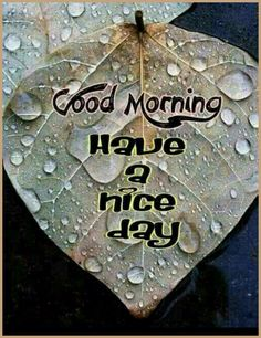 479 Best Good Morning Gif photos by sonusunariya Good Morning Rainy Day, Good Morning Cards, Good Morning Picture, Good Morning Friends, Good Morning Messages, Good Morning Good Night, Good Morning Wishes, Good Morning Quotes, Morning Sayings