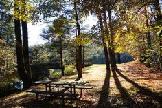 Stop for a picnic along the New River Trail State Park in Virginia