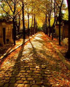 I'd love to meander down this path...