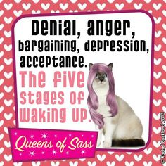 I'm on 6... The 'meh' whatever stage! ☕️ #QueensOfSass