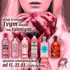 Cafe Bulldog - Valentýnský týden s růžovými Giny Gin, Guinness, Jeans, Jin