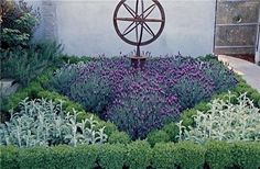 Loose plantings surrounded by a boxwood hedge is such a classic English garden theme. Love this garden armillary surrounded by blooming Spanish lavender, English boxwood, and lamb's ears. Designed by Brian Maloney Design.