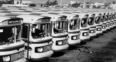 Chegaram os novos ônibus da E.O Guarulhos (em 1979) pic.twitter.com/BPak2oZK8b