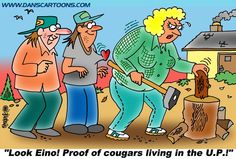 They say cougars don't exist in the U.P. - Don't tell that to Toivo & Eino!