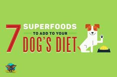 Super foods. We the idea of super foods to get extra nutrition into your pets diet! Not sure Ollie & Penny love the idea as much as us, but we are gonna