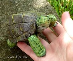 Handmade one of a kind Turtle polymerclay sculpture by Mystic Reflections Polymer Clay Turtle, Polymer Clay Animals, Happy Turtle, Turtle Love, Cute Baby Animals, Animals And Pets, Pet Turtle, Diy Dog Costumes, Cute Turtles