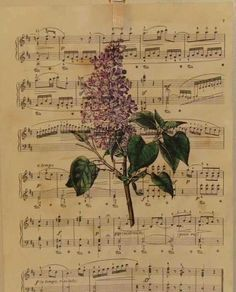 DIY: Make Your Own Antique Sheet Music Prints - plus how to tea stain paper. Good info to know for all of the sheet music crafts out there. Sheet Music Crafts, Sheet Music Art, Music Paper, Vintage Sheet Music, Vintage Sheets, Vintage Paper, Music Sheets, Piano Sheet, Music Music