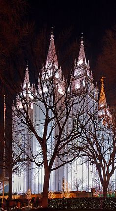 LDS Temple, Salt Lake City, Utah Copyright: Dana Rees Copyright: Dana Rees