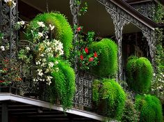 """New Orleans - French Quarter """"Cast-Iron Balcony & Floral Baskets""""   Flickr - Photo Sharing!"""