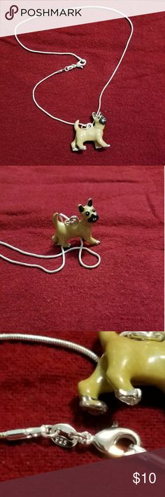 Cute Little Dog on a SS Chain Cute!!! On a 16 inch SS chain Jewelry Necklaces